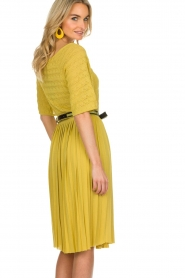 ELISABETTA FRANCHI |  Dress with waistbelt Amie | yellow  | Picture 5