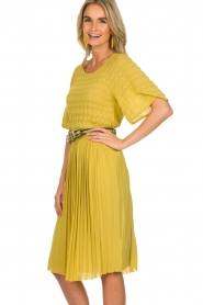 ELISABETTA FRANCHI |  Dress with waistbelt Amie | yellow  | Picture 4