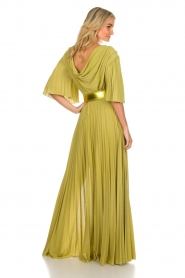 ELISABETTA FRANCHI |  Maxi dress Belle | green  | Picture 6