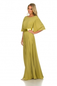 ELISABETTA FRANCHI |  Maxi dress Belle | green  | Picture 5