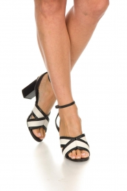 What For |  Sandals with heels Evi | black  | Picture 3