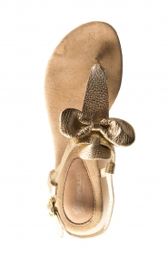 Maluo | Leather sandals Fabia | gold  | Picture 6