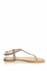 Maluo | Leather sandals Marina | grey  | Picture 2