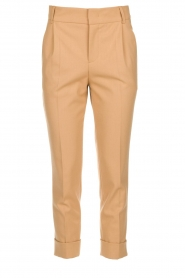 Set |  Classic trousers Murphy | camel
