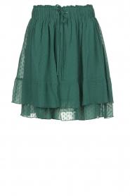 Les Favorites | Ruches rok met stippen Marli | groen  | Afbeelding 1