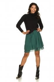 Les Favorites | Ruches rok met stippen Marli | groen  | Afbeelding 3