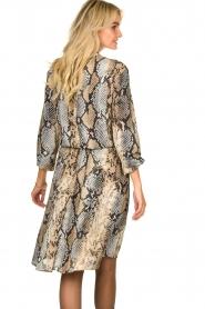 Kocca   Dress Atlanta   animal print    Picture 7