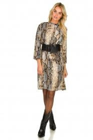 Kocca   Dress Atlanta   animal print    Picture 4