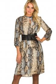 Kocca   Dress Atlanta   animal print    Picture 3