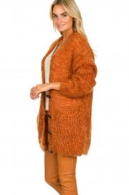 Les tricots d'o | Woolen cardigan Forrest | orange  | Picture 5