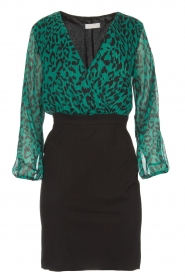 Freebird |  Leopard printed dress Milena | green  | Picture 1
