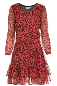 Freebird |  Leopard printed dress Georgia | red  | Picture 1