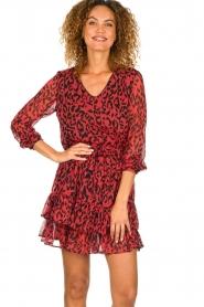 Freebird |  Leopard printed dress Georgia | red  | Picture 2