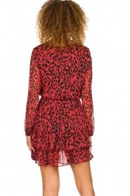 Freebird |  Leopard printed dress Georgia | red  | Picture 5