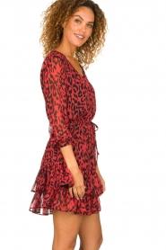 Freebird |  Leopard printed dress Georgia | red  | Picture 4