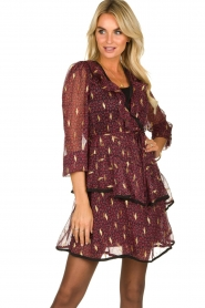 Freebird |  Printed wrap dress Chloe | burgundy  | Picture 4