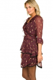 Freebird |  Printed wrap dress Chloe | burgundy  | Picture 5