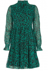 Freebird |  Dress with leopard print Katie | green  | Picture 1