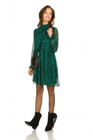 Freebird |  Dress with leopard print Katie | animal print  | Picture 3