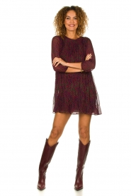 Janet & Janet | Leather boots with croco print Miranda | bordeaux  | Picture 3