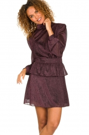 Silvian Heach | Dress Osieaux | purple  | Picture 2