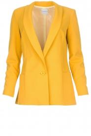 Silvian Heach | Blazer Kilfa | Yellow  | Picture 1