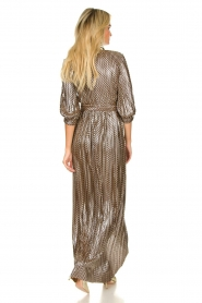 ba&sh |  Metallic maxi dress Pacey | metallic  | Picture 5