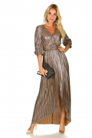 ba&sh |  Metallic maxi dress Pacey | metallic  | Picture 3