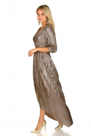 ba&sh |  Metallic maxi dress Pacey | metallic  | Picture 4