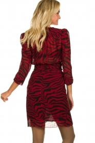 ba&sh |  Zebra print dress Saphir | red  | Picture 5