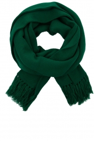 Essentiel Antwerp |  XL scarf Tupacco | green  | Picture 1
