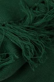 Essentiel Antwerp |  XL scarf Tupacco | green  | Picture 3