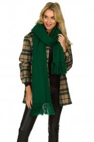 Essentiel Antwerp |  XL scarf Tupacco | green  | Picture 2