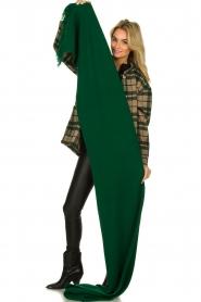 Essentiel Antwerp |  XL scarf Tupacco | green  | Picture 5