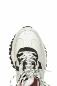 Essentiel Antwerp | Leather sneakers Trespasser | multi  | Picture 5