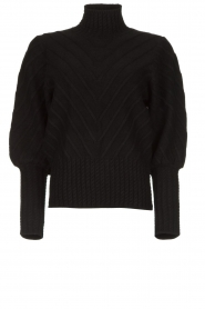 Silvian Heach |  Turtleneck sweater Tapajos | black  | Picture 1