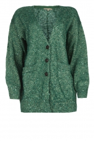 Patrizia Pepe |  Cardigan with lurex and sequins Nua | green  | Picture 1