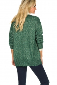 Patrizia Pepe |  Cardigan with lurex and sequins Nua | green  | Picture 5