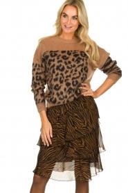 Set |  Zebra print midi skirt Marthy | animal print  | Picture 2