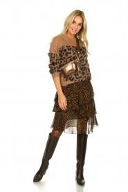 Set |  Zebra print midi skirt Marthy | animal print  | Picture 3