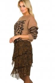 Set |  Zebra print midi skirt Marthy | animal print  | Picture 4
