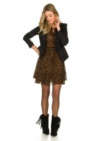 Set |  Skirt with zebra print Yara | camel  | Picture 3