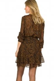 Set |  Skirt with zebra print Yara | camel  | Picture 5