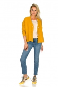 JC Sophie |  Knitted cardigan Amalia | ochre yellow  | Picture 3