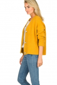 JC Sophie |  Knitted cardigan Amalia | ochre yellow  | Picture 4