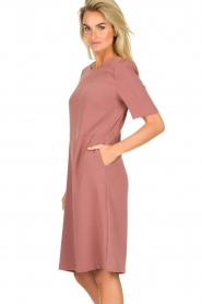 JC Sophie |  Dress Australia | pink  | Picture 4
