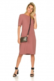 JC Sophie |  Dress Australia | pink  | Picture 3