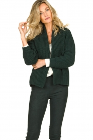 Be Pure | Knitted cardigan Marloes | green  | Picture 2