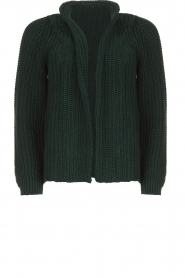 Be Pure | Knitted cardigan Marloes | green  | Picture 1