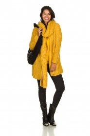 Be Pure |  Chunky knitted cardigan Charly| yellow  | Picture 3